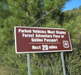 forest_adventure_pass